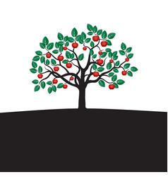 young tree with green leafs roots and red apple vector image