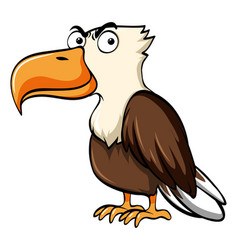 Eagle with serious face vector