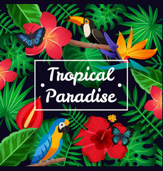 flat tropical frame vector image vector image