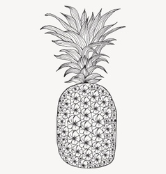 Hand-drawn pineapple on white background vector