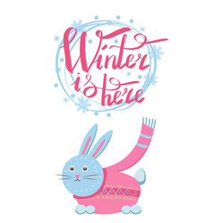 winter is here little gray hare in sweater icon vector image vector image