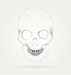 The symbol of the skull vector