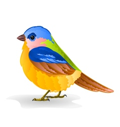 Small bird titmouse cute songbird vector