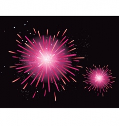 fireworks display vector image vector image