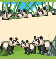Paper background with panda in bamboo forest vector