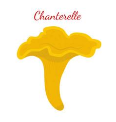 chanterelle mushroom cartoon flat style vector image