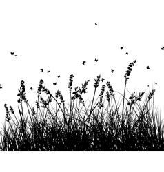 Meadow background vector image vector image