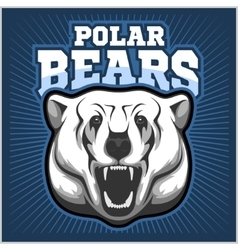 Polar bear head mascot - vector
