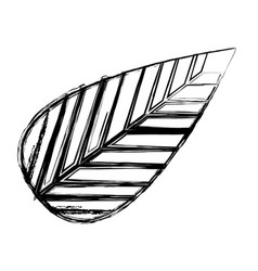 monochrome sketch of tree leaf vector image