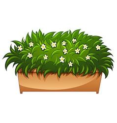A flowering houseplant vector