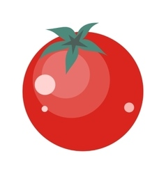 Tomatoes Isolated Healthy Nutrition vector image