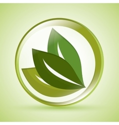 Eco and natural design vector