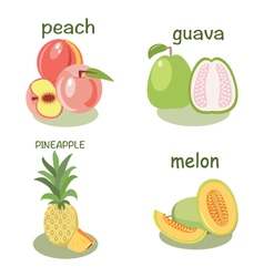 Fruits peach guava melon pineapple vector