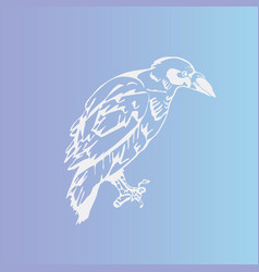 Hand-drawnbirdravencrowrook engraving vector