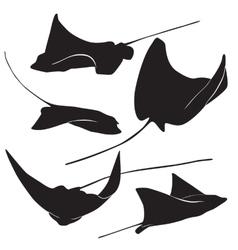 stingray silhouette vector image