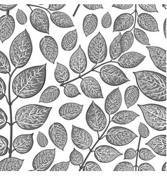 Seamless pattern of birch honeysuckle grey leaves vector