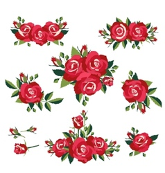 roses on white background vector image