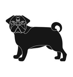 Bulldog single icon in black stylebulldog vector