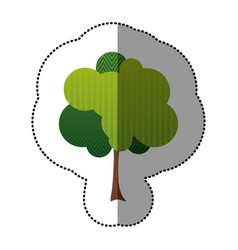color stylized tree icon vector image
