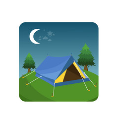 tent in green grass vector image