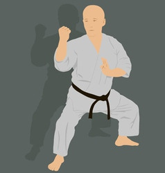 The man is engaged in karate on a green background vector image