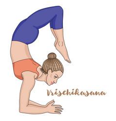 women silhouette scorpion yoga pose vector image vector image