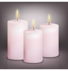 Three pink candles vector