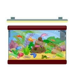 Aquarium fish seaweed underwater marine animal vector