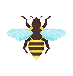 Flat style of bee vector