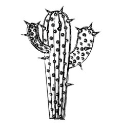 Monochrome blurred silhouette of cactus with two vector