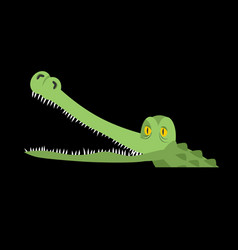 Crocodile in water alligator in river water vector