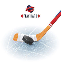 Hockey Stick And Puck vector image