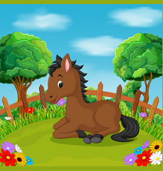 cartoon happy horse smile in the farm vector image vector image