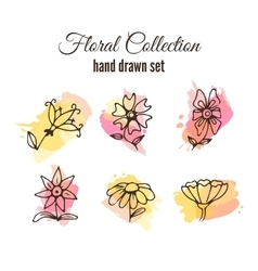 floral decorative set Colorful splashes vector image