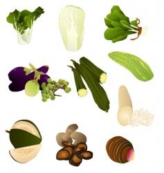 thai produce vector image