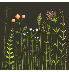 Wild flowers and grass field on black collection vector