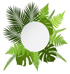 Tropical leaves background with white round banner vector