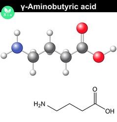 Gamma aminobutyric acid synaptic neurotransmitter vector