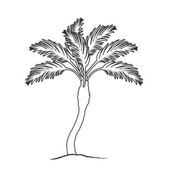 palm beach treesummer rest single icon in outline vector image