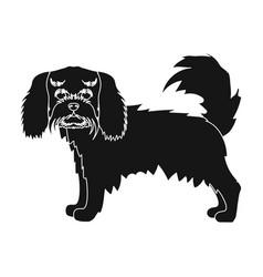 Spaniel single icon in black stylespaniel vector