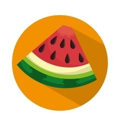 Watermelon half nutrition food health vector
