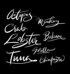 octopus animal hand written typography vector image