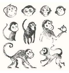 Set funny monkey new year chinese drawn sketch vector
