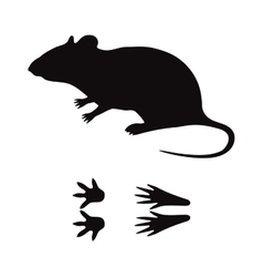 Black silhouette rat mouse wild animal zoo vector