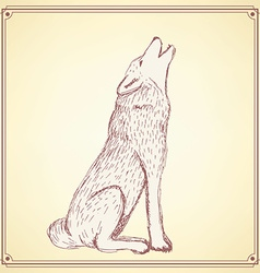 Sketch howling wolf in vintage style vector