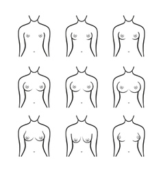 Female breast set different types size and form vector