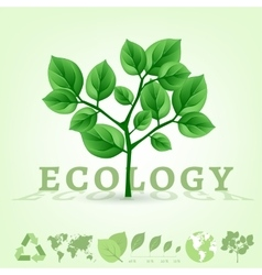 ecology world infographics vector image vector image