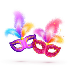 Pair of bright carnival masks with colorful vector image vector image