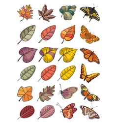 collection of leaves and butterflies vector image vector image