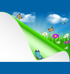 Spring background with sky flowers grass vector image